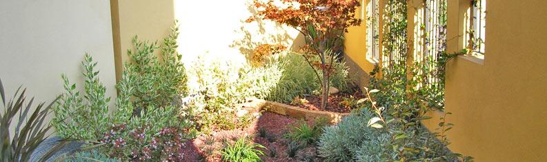 Corteverde progettazione realizzazione e manutenzione for Progettazione giardini cremona